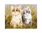 """40*50 см """"Два котёнка"""" картина-раскраска по номерам на холсте"""
