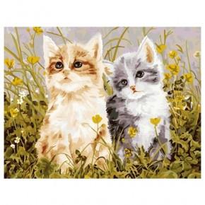 """Картина-раскраска по номерам """"Два котёнка"""" 40*50 см на холсте"""