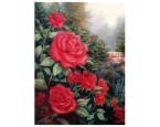 """40*50 см """"Красные розы"""" картина-раскраска по номерам на холсте"""