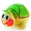 """ЭкоЖивчик """"Черепаха"""" (травянчик в подарочной коробке)"""