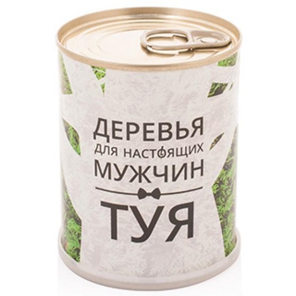 """""""Туя"""" дерево для мужчин (набор для выращивания в банке) - 1"""