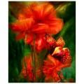 """""""Бабочка на маке"""" 40*50 см картина-раскраска по номерам на холсте"""