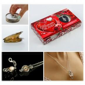 """Подарочный набор """"Жемчужина любви"""": жемчужина, кулон, цепочка"""